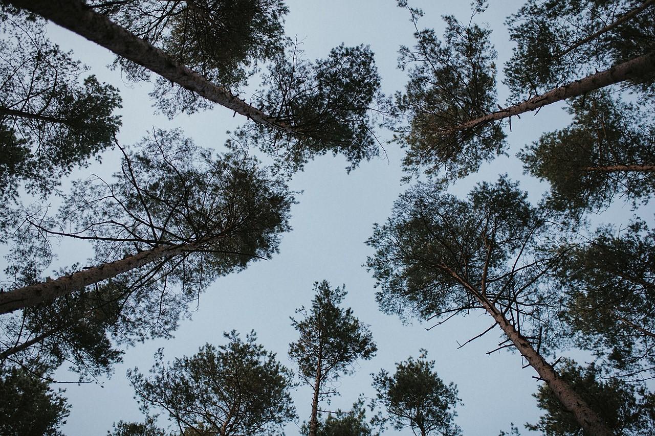 Rezerwat Skałki Piekło nad Niekłaniem